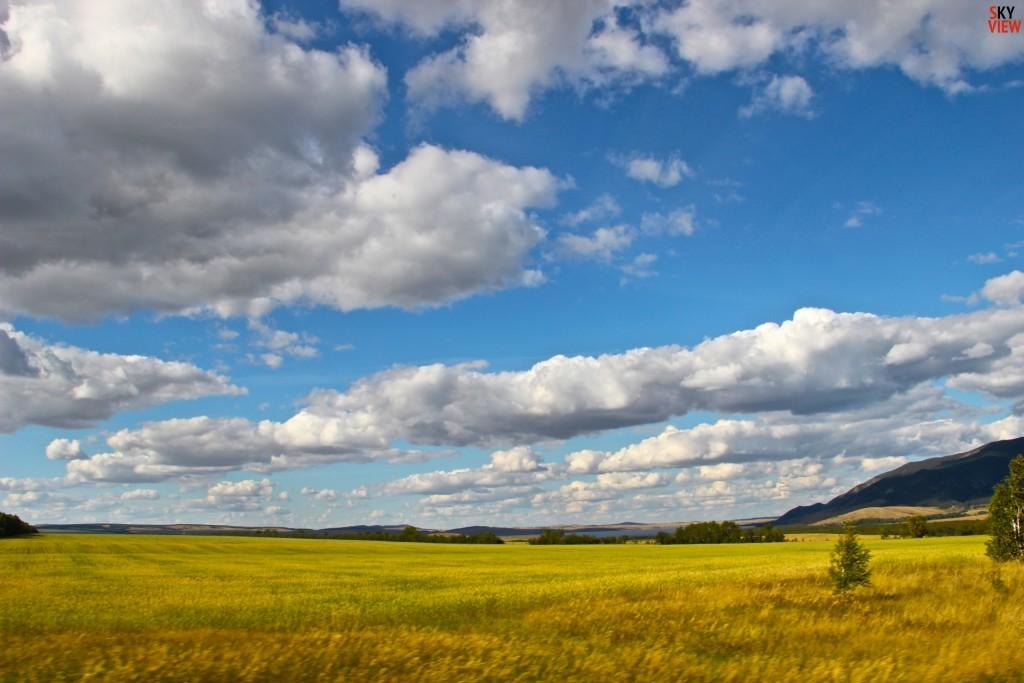 Очень красивые поля. Кокшетау - Боровое
